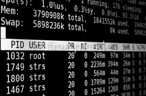 Linux-Kommandozeile: top (weiß)